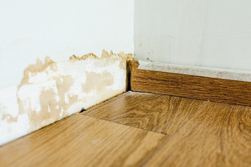 3 najskuteczniejsze metody osuszania budynku po zalaniu
